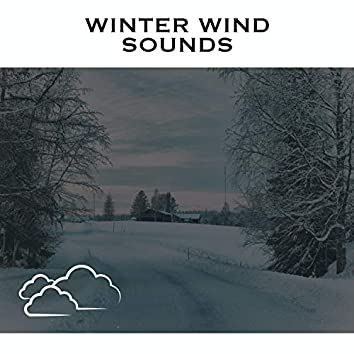 Winter Wind Sounds