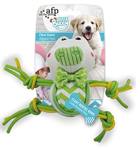 ALL FOR PAWS AFP4206 Jouet pour Chiots Little Buddy Crocodile
