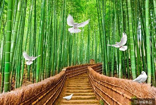 Murales de Pared Papel Pintado Paloma De Bosque De Bambú Verde Fotomurales Dormitorio Sala de Estar Sofá Fondo de Pantalla Decoración de la Pared Murales,350x250cm