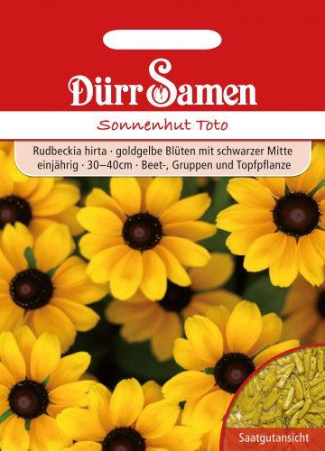 Dürr Samen 0972 Sonnenhut Toto (Sonnenhutsamen)