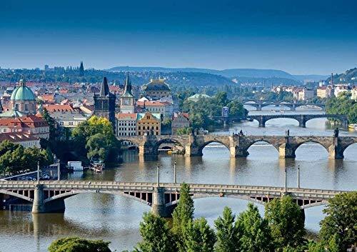 DFGJ Rompecabezas Los Puentes de Praga 5000 Piezas (181 * 105 cm)