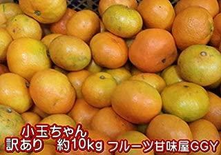 小玉ちゃん 熊本みかん 訳あり 1箱 箱込10キロ(9kg+保証分500g)