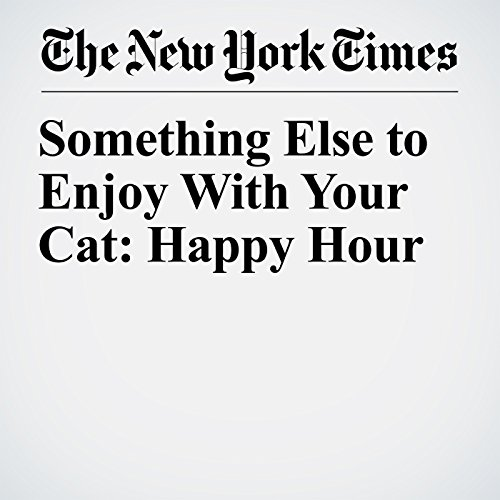 Something Else to Enjoy With Your Cat: Happy Hour copertina
