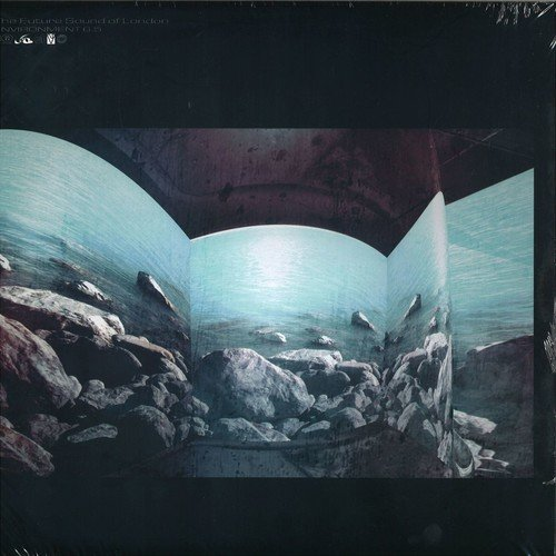 Environments Vol.6.5 [Vinyl LP]
