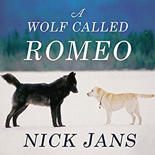 A Wolf Called Romeo audiobook cover art
