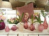 Dutz Collection | NADIEL Deko Glas Vase H 14 cm B3 Rosa Blumenvase Glasvase | Mundgeblasen | Tischdeko Frühling Sommer - 4