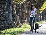 Joggingleine für Hunde mit extra hoher Spannkraft für Belastungen bis 100kg und dehnbar von 120 bis 220cm | stoßdämpfend und reflektierend | von Happilax - 7