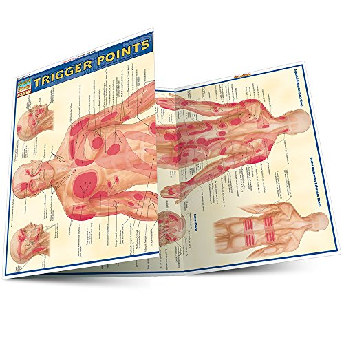 trigger point wall chart - 4