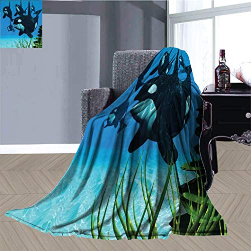 JxjwsPrints Whale Ultra Soft Warm Blanket, Pod of Killer Whales Swim Along a Reef Looking For Fish Prey Ocean Picture Print Thermal Blanket Bedding for All Season, 90' x 70' Sky Blue Green