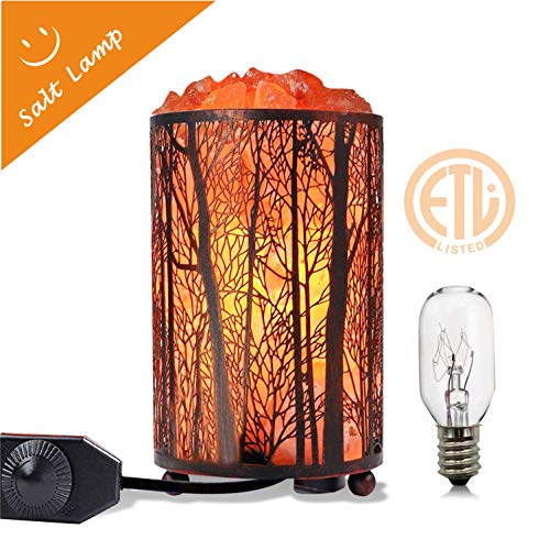 Himalayan Salt Lamp, Salt Rock Lamp Natural Night Light in Forest Design Metal Basket with Dimmer Switch (4.1 x 6.5' 4.4-5lbs), 25Watt Bulbs & ETL Cord 1 Pack