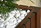 Thassos 20 Kilo Bag 30-60mm Decorative Natural Marble Pure White Pebbles Stones Gravel Chippings Landscape Garden Home