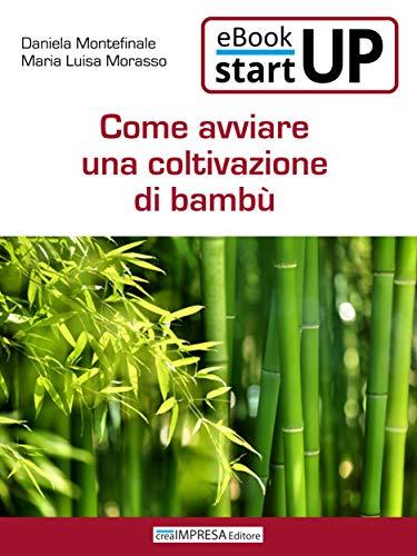 Come avviare una coltivazione di Bambù