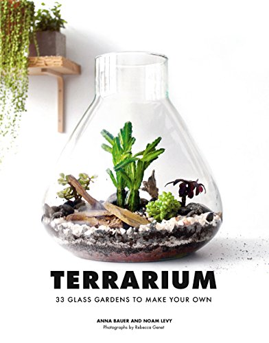 Best make terrarium