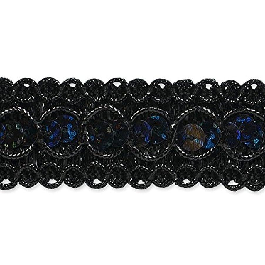 Expo International Trish Sequin Metallic Braid Trim Embellishment, 20-Yard, Black