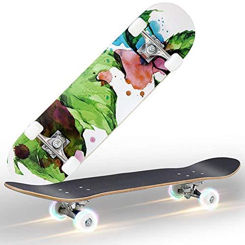 Dujie Deck Cruiser, Standard Skateboard Color Flashing Wheel for Beginners, 31 Inch Drop Through Longboard Skateboard Complete Heavy-Duty Aluminum Truck (Color : 3)