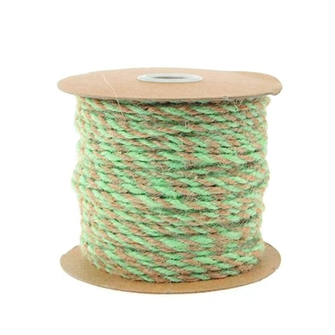 Homeford Firefly Imports Jute Twine Cord Ribbon Bi-Colored, 5/64-Inch, 50 Yards, Mint Green,