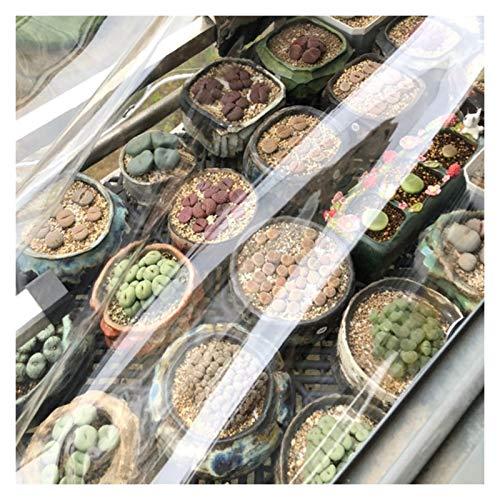 GYYARSX Lonas Transparente Lona Alquitranada Cubierta De Jardín De Invernadero De PVC Transparente De 0,3 Mm De Espesor, con Esquina Reforzada De Plástico, para Terraza Y Techo, 40 Tamaños