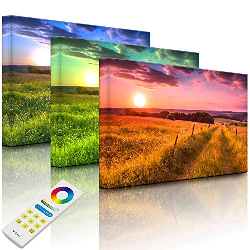 Lightbox-Multicolor | Wandbild beleuchtet | Wunderschöne Bergwiese im Sonnenaufgang | 100x70 cm | Fully Lighted