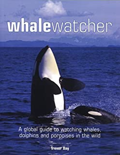 Best wild whale watching Reviews