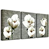 Living Room Wall Decor Canvas Wall Art For Bedroom Bathroom Wall Painting Artwork Gray Green Vintage Style White Flowers Abstract Pictures Wall Decorations For Kitchen 3 Panels Modern Family Decor