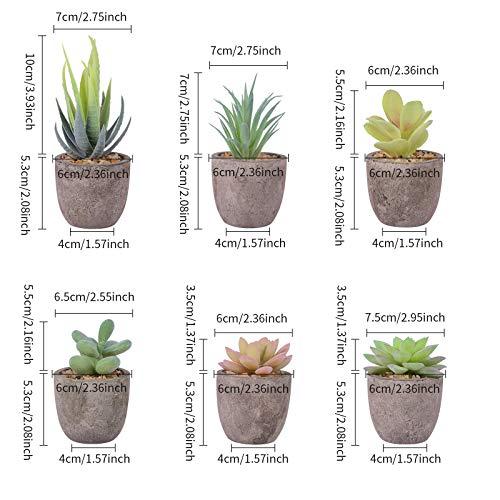 Uponer Plantas