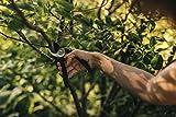 Fiskars Bypass-Gartenschere M, Solid, P321, Für frische Äste und Zweige, Antihaftbeschichtet, Edelstahl-Klingen, Länge: 20,1 cm, Schwarz/Orange, 1057162 - 2