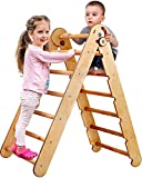 Kids Climber - Triangle Ladder - Toddler Gym Indoor...