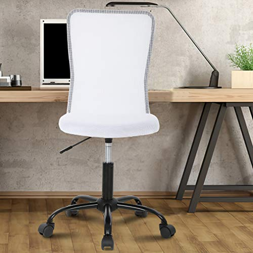 Office Chair Desk Chair Computer Chair with Lumbar Support Ergonomic Mid Back Mesh Adjustable Height Swivel Chair Armless Modern Task Executive Chair for Women Men Adult,White