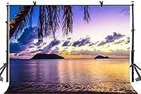 HiYash 7x5ft ビーチの夕日のテーマ背景トロピカルビーチ美しい夕日の結婚式の誕生日パーティーの写真の背景の小道具美しい思い出のビニール素材の写真スタジオの写真の小道具