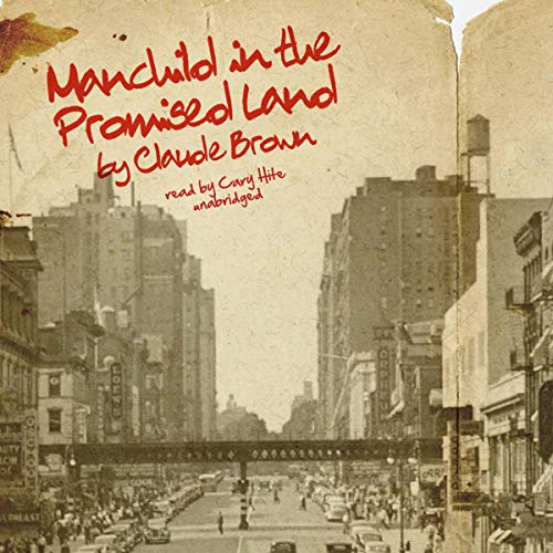 Manchild in the Promised Land cover art