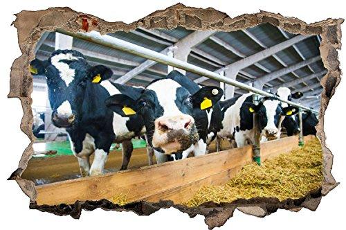 Kühe Kuh Landwirt Tier Wandtattoo Wandsticker Wandaufkleber D1315 Größe 40 cm x 60 cm