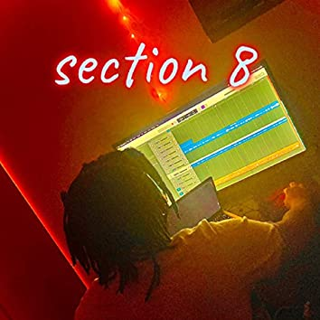 Section 8 (Freestyle)