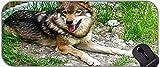 GRANDE XXL Base in gomma antiscivolo Mousepad con bordi cuciti inverno lupo animale antiscivolo Base di gomma Mousepad