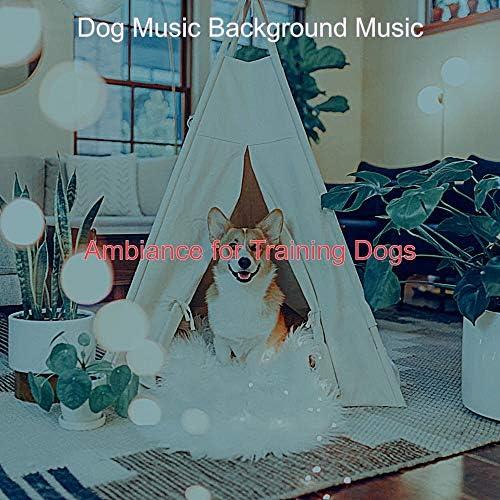 Dog Music Background Music
