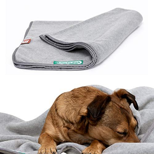 Doctor Bark | kuschelige Hundedecke waschbar bis 95°C, hygienische, weiche Fleecedecke für Sofa und Hundebett, Flauschige Haustierdecke - Made in Germany (XL - 140x100 cm/Hellgrau)