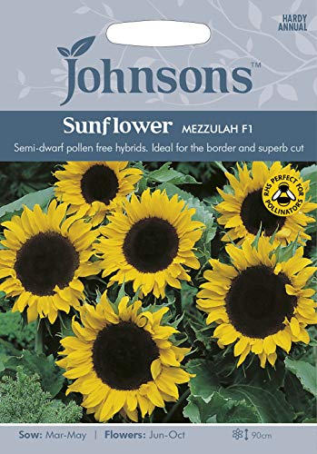 Portal Cool Johnsons Graines de fleurs de tournesol: Mezzulah F1 20 Sow En 2021 graines
