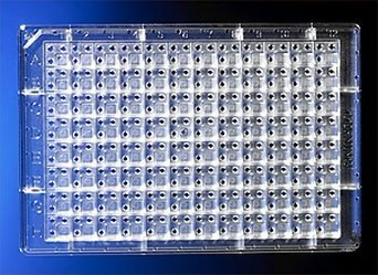 Corning 96 Well White Cheap super special price Flat NBS Polystyrene Bottom Max 47% OFF Microplates