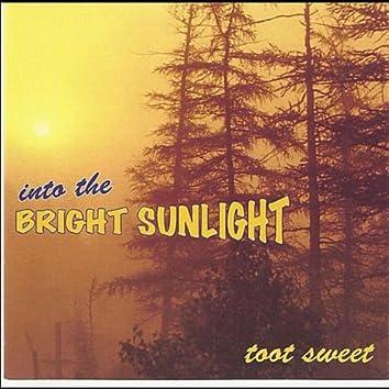 Into the Bright Sunlight