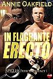 In Flagrante Erecto (Spyglass Detective Agency Book 1) (English Edition)