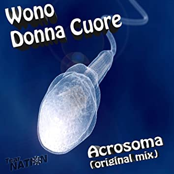 Acrosoma