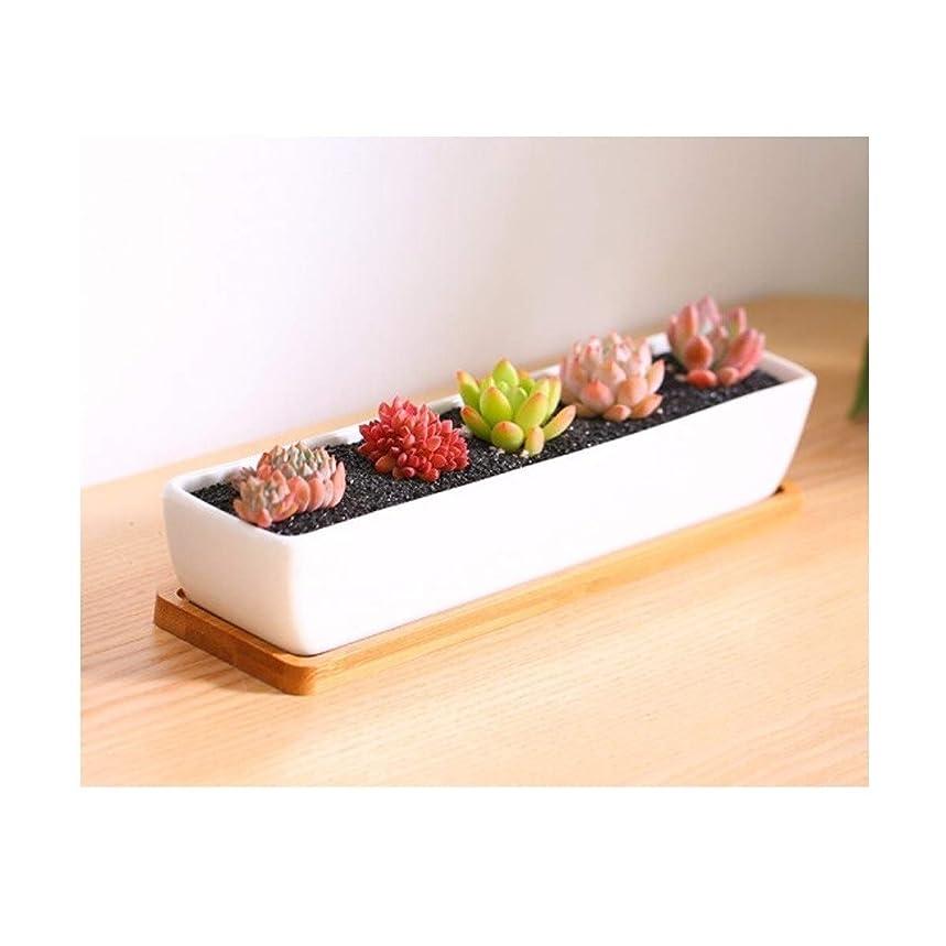 異議キルス先PPSM ジューシーなフラワーポット、シンプルな長方形肉質フラワーポット、白い磁器鍋や肉質陶器 (Color : A)