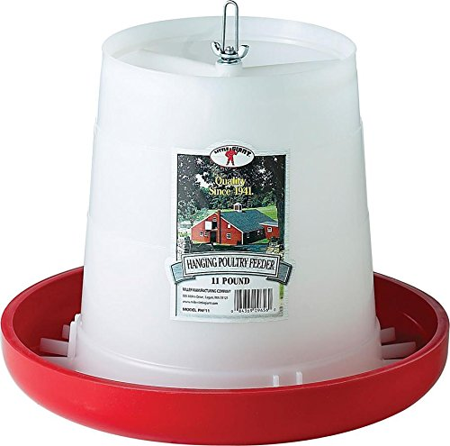 best chicken feeder LITTLE GIANT