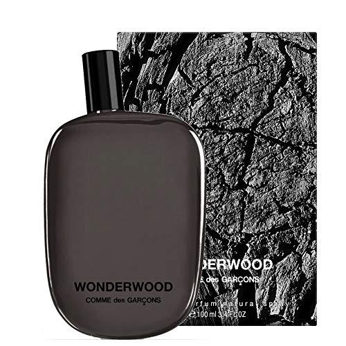 Comme des Garcons Wonderwood homme/men, Eau de Parfum, Vaporisateur/Spray, 1er Pack (1 x 100 ml)