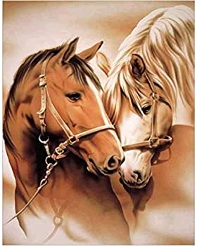 Diamond Paintings WisLotife Full Drill Round Rhinestone Crystal Embroidery Pictures for Home Wall Decoration Love Horse 12 x16