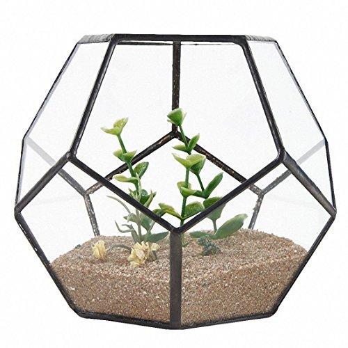 SODIAL Schwarz Glas Pentagon Geometrische Terrarium Container Fensterbank Decor Blumentopf Balkon Pflanzer Diy Display Box (keine Pflanze)