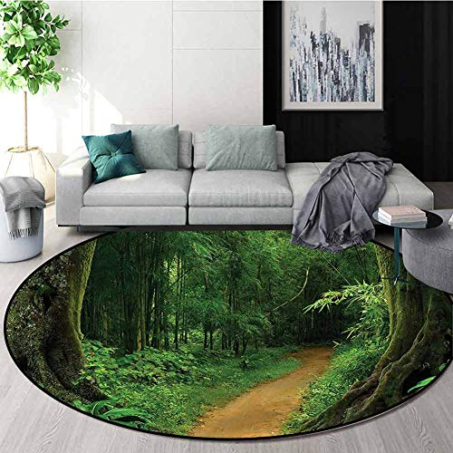 Cheapest Price! RUGSMAT Tropical Round Area Rug,Jungle Forest Trees Study Computer Chair Cushion Bas...