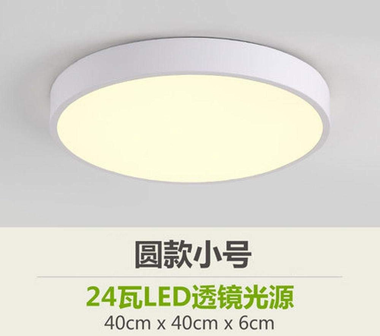 Zhouzhou666 Ledl Deckenleuchte Modernes Schlafzimmer Wohnzimmer Esszimmer Studie Gang Balkon Licht, Weies Licht 24 Watt