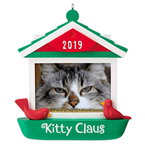 Hallmark Keepsake Christmas Ornament 2019 Year Dated Kitty Claus Cat in Bird Feeder Photo Frame