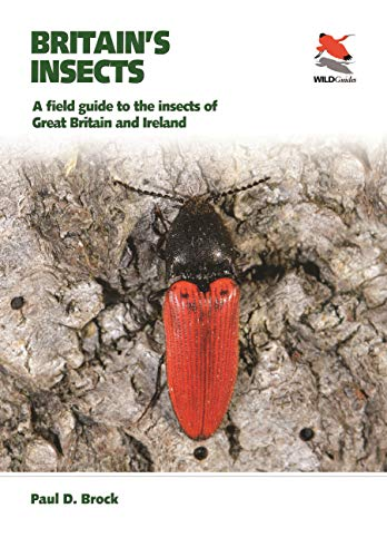 Britain's Insects: A field guide to the insects of Great Britain and Ireland (WILDGuides)