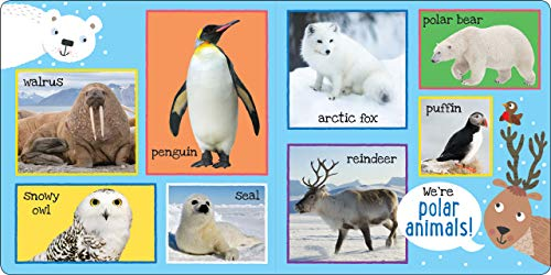 My First 101 ANIMALS Padded Board Book